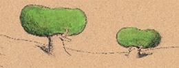 İki Ağaç