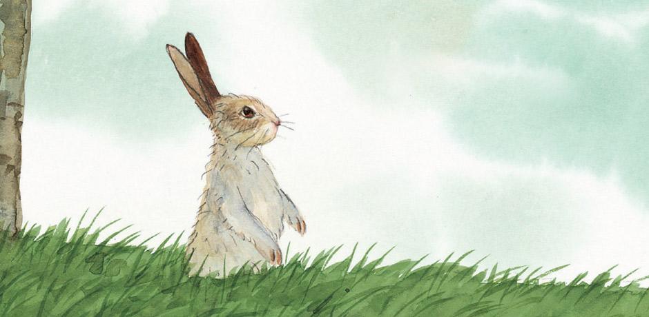 Bay Tavşan'ın Bir Fikri Var