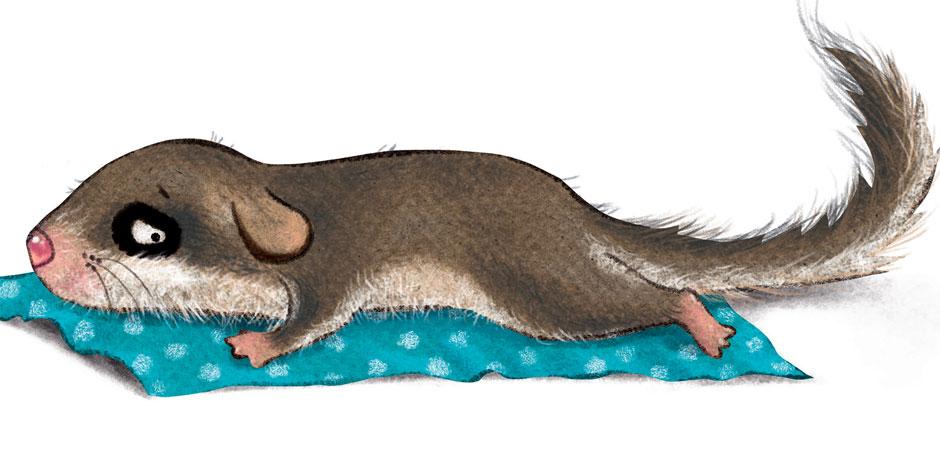 Uykuya Dalamayan Minik Yediuyur'un Hikâyesi