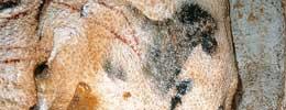 Mağaradaki Zihin