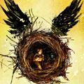 """""""Harry Potter ve Lanetli Çocuk"""" Kasım ayında raflarda"""