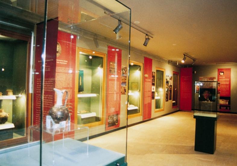 Sergi vitrinleri ve duvar panoları genel görünümü