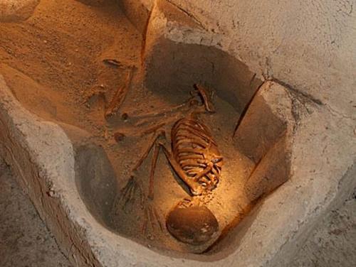 Çatalhöyük ev içi gömü geleneği