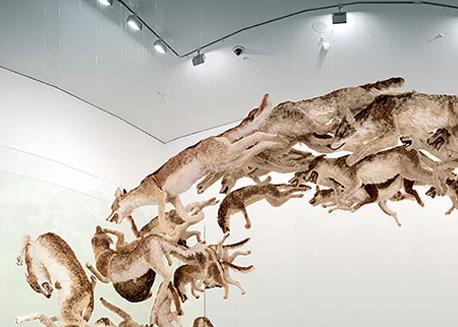 Cai Guo Qiang - Kafadan: 2006, Gerçek boyutta bir kurdun 99 adet kopyası, cam duvar, kurtlar; gazlı bez, reçine ve boyanmış hayvan derisi, değişken boyutlar. En zararlı sınırlar gizli olanlardır.