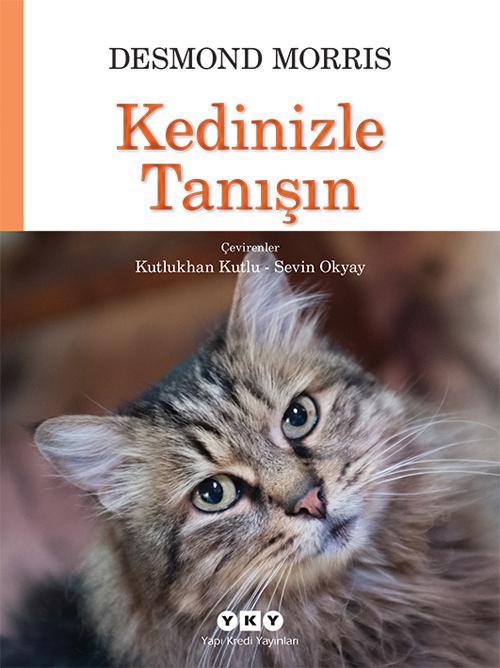 Kedinizle Tanışın