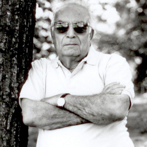 Yaşar Kemal - Neredesin Arkadaşım