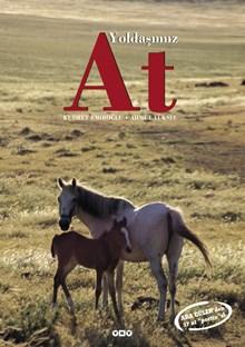 Yoldaşımız At