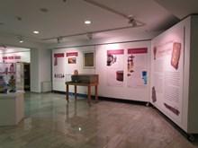 2.Sergi duvar panoları ve vitrin görünümü