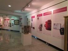 4.Sergi duvar panoları ve vitrin görünümü