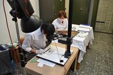Sikke Koleksiyonu laboratuvar ve atölye çalışmaları