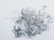 Kuyu Başı, 1994, Arches kağıt üzerine rotring, 55x75 cm