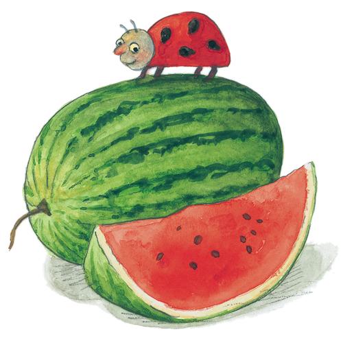 Meyveleri Kim Yemiş
